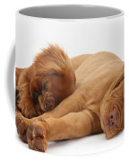 Dogue De Bordeaux And Cavalier King Coffee Mug