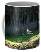 East African Crowned Crane Coffee Mug