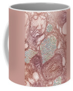 Eastern Equine Encephalitis Virus Coffee Mug