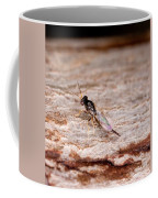 Emerald Ash Borer Parasite Coffee Mug by Science Source