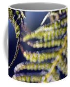 Enchanted Ferns Coffee Mug