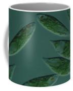 Euglena Viridis Coffee Mug