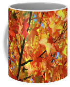 Fall Colors Coffee Mug by Carlos Caetano