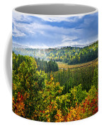 Fall Forest Rain Storm Coffee Mug by Elena Elisseeva