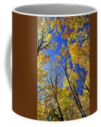 Fall Maple Trees Coffee Mug