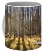 Fall On The Mountain  Coffee Mug