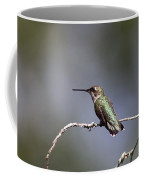 Feathers In Place Coffee Mug
