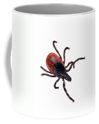 Female Blacklegged Tick Coffee Mug