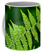 Fern Seed Coffee Mug