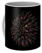 Fireworks Fun 3 Coffee Mug