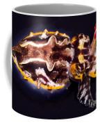 Flamboyant Cuttlefish Coffee Mug