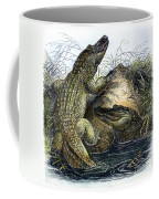 Florida Alligators Coffee Mug