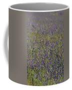 Flower Known As Salvation Jane Coffee Mug