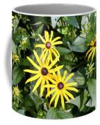 Flower Rudbeckia Fulgida In Full Coffee Mug