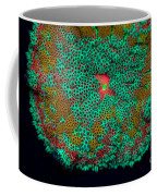 Fluorescent Sea Anemone Coffee Mug