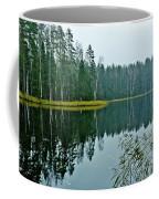 Forest Lake Coffee Mug