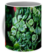 Fresh Chives Coffee Mug by Susan Herber