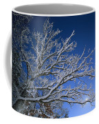 Fresh Snowfall Blankets Tree Branches Coffee Mug by Tim Laman