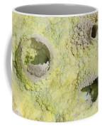 Fumarole Deposits In The Dallol Coffee Mug