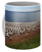 Gannet Colony Coffee Mug