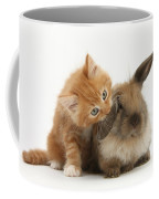 Ginger Kitten And Young Lionhead-lop Coffee Mug