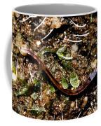 Glowworm Coffee Mug