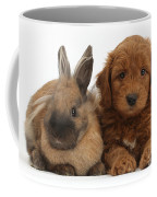 Goldendoodle Puppy And Rabbit Coffee Mug