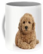 Goldendoodle Puppy Coffee Mug