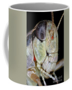 Grasshopper With Parasitic Mite Coffee Mug