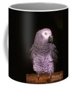 Gray Parrot Coffee Mug