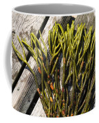 Green Fleece Seaweed Coffee Mug