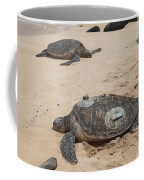 Green Sea Turtles With Gps Coffee Mug
