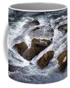 Harbor Seals Coffee Mug