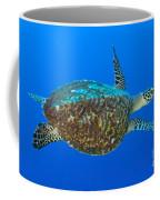 Hawksbill Sea Turtle, Kimbe Bay, Papua Coffee Mug