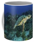 Hawksbill Turtle On Caribbean Reef Coffee Mug