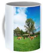 Hereford Bullocks Coffee Mug