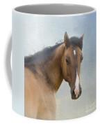 I Walk In Beauty Coffee Mug