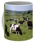 Ireland Friesian Cattle Coffee Mug