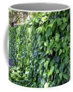 Ivy Wall Coffee Mug