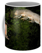 Jumping Gray Squirrel Coffee Mug