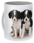King Charles Spaniel Puppies Coffee Mug by Jane Burton
