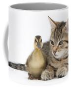 Kitten And Duckling Coffee Mug