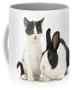 Kitten And Dutch Rabbit Coffee Mug