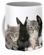 Kittens And Rabbits Coffee Mug