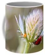 Ladybug On Thistle Coffee Mug