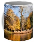 Lazienki Park Autumn Scenery Coffee Mug