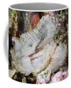 Leaf Scorpionfish, Indonesia Coffee Mug