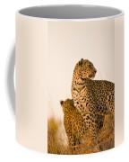 Leopard Panthera Pardus, Arathusa Coffee Mug