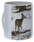 Little White Tail On The Move Coffee Mug