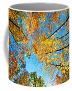 Looking Up At All The Colors Coffee Mug
